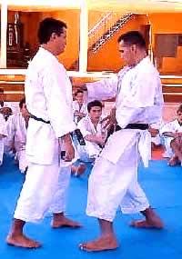 Especialización de Karate-do Shotokan Tradicional - Encarnación Paraguay